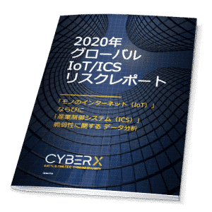 2020_risk_report_jp